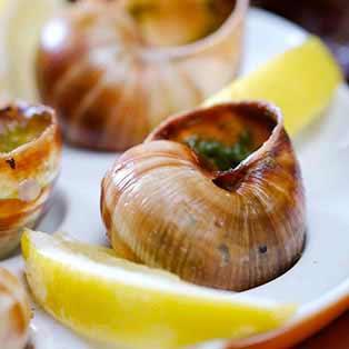 Escargots, Mushrooms & Truffles
